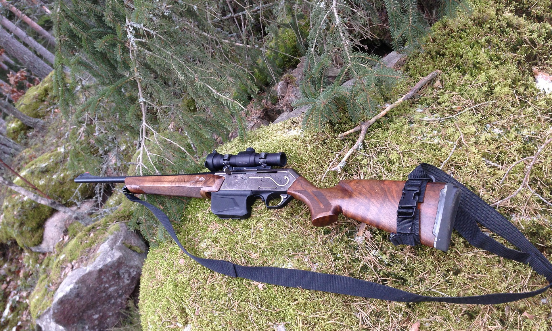 Lån penge til en jagtriffel og vær klar til jagtsæsonen