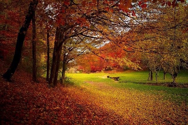 efterårsferie med et billigt lån